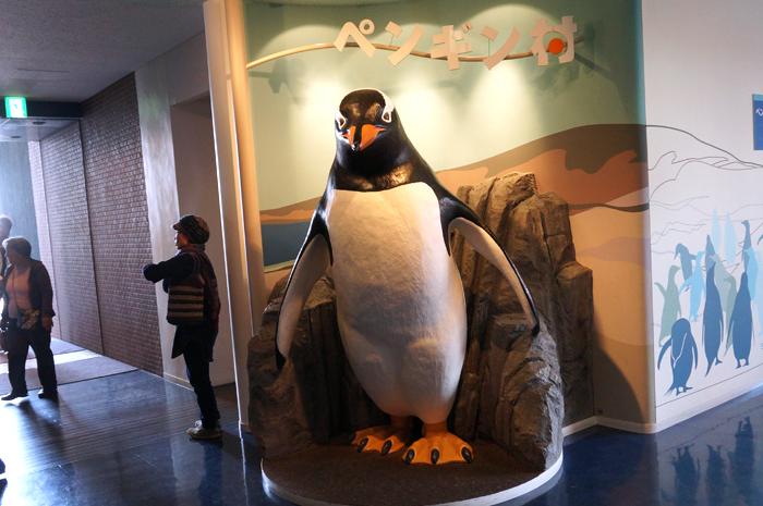 ペンギン村の入り口