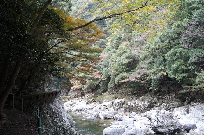 長門峡の大自然