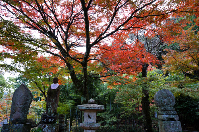 両足寺境内の紅葉