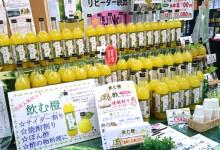 柚子屋(YUZUYA)店内
